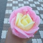 585-バラ盛り