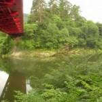 92-ウグイの川